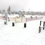 Manor Farm Park winter