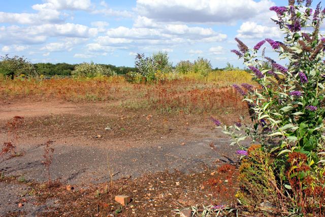 View across the former brickyard site